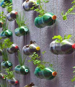 upcyclen fles naar verticale tuin