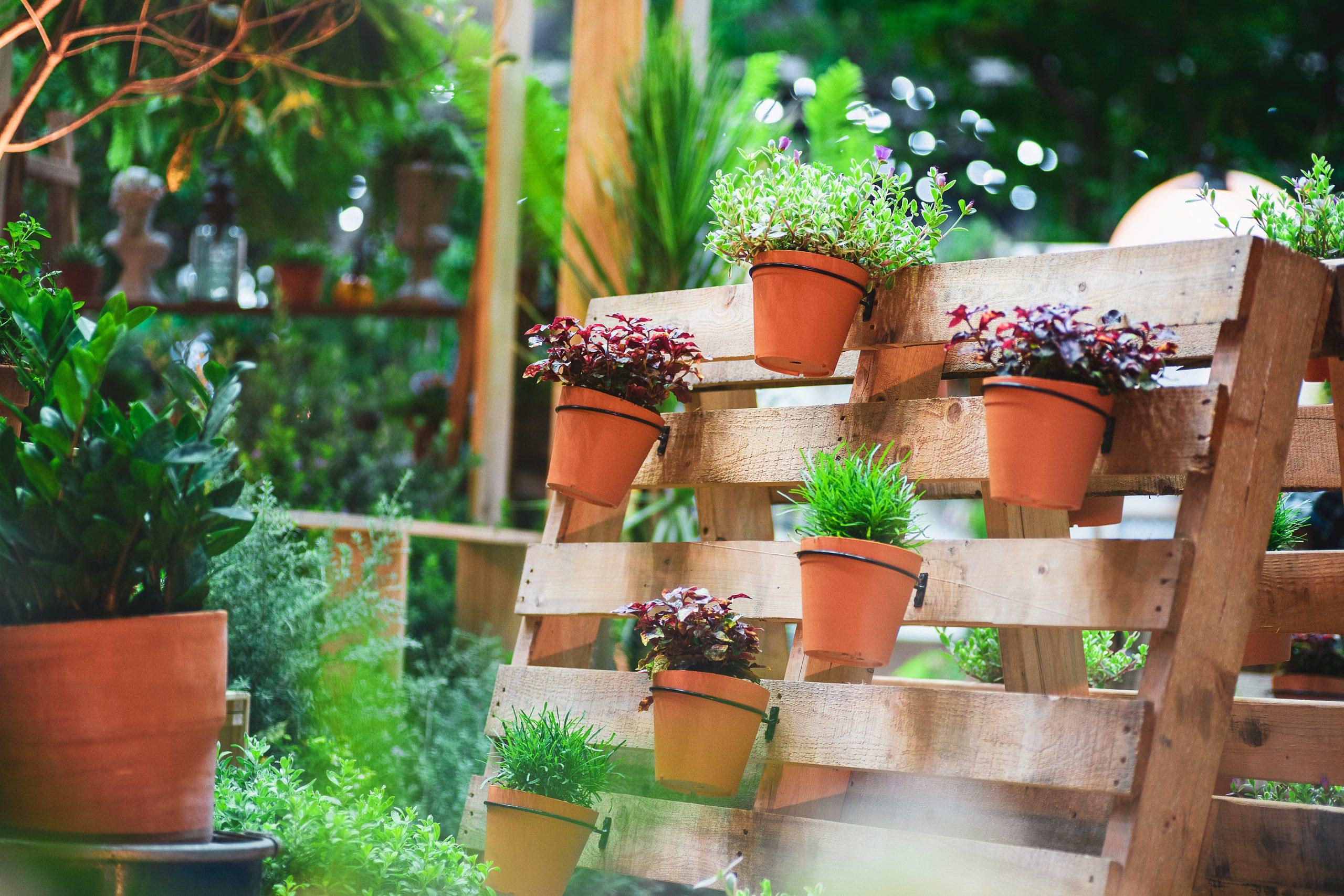 pallet met bloempotten en planten
